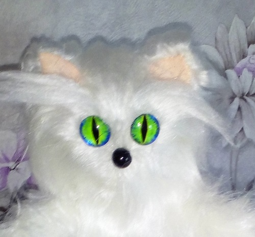 мордочка котенка