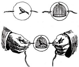поделка из диска тауматроп