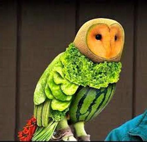 полярная сова из овощей
