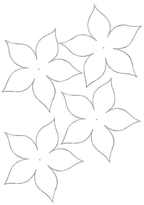 Пятилепестковые цветы
