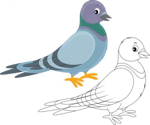 Покормите птиц зимой голуби